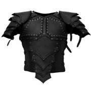 Dragonrider Leather Armour